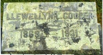 COOPER-LLEWELLYN L-CEM1