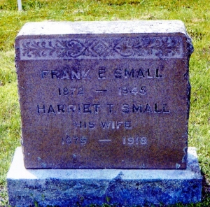 SMALL-FRANK E-CEM1